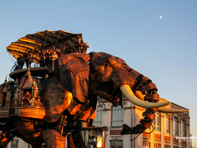 Elephant from Nantes